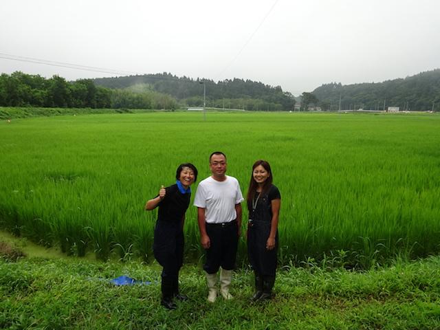 田んぼと芳賀さん・ナナコさん・ミドリ様