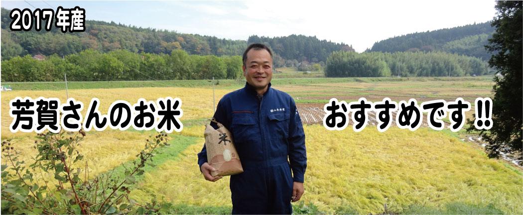 芳賀さんのお米、オススメです。